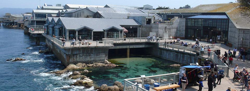 cm-monterey-bay-aquarium-bayside-slider