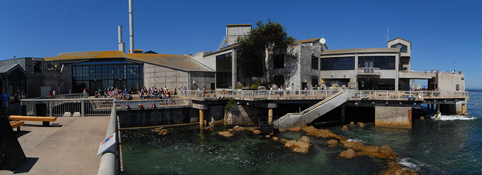 cm-monterey-bay-aquarium-slider